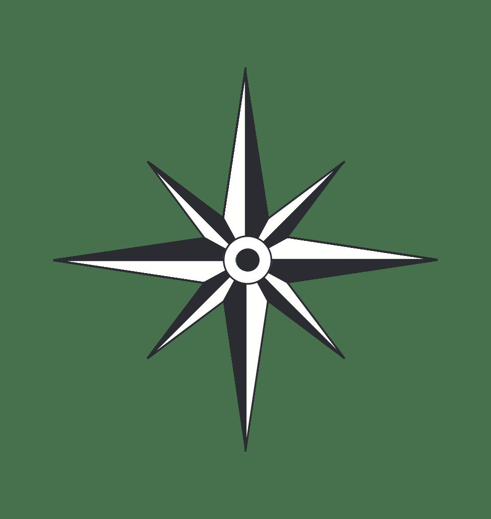 Compass pointer